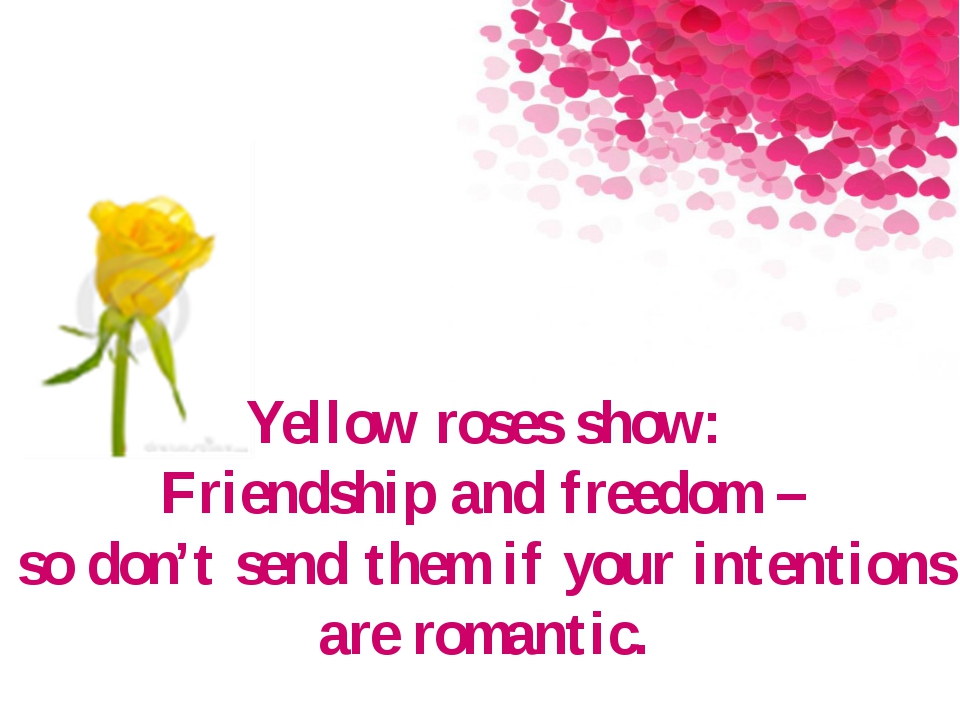 Yellow roses show: Friendship and freedom – so don't send them if your intent...