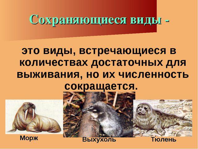 Сохраняющиеся виды - это виды, встречающиеся в количествах достаточных для вы...