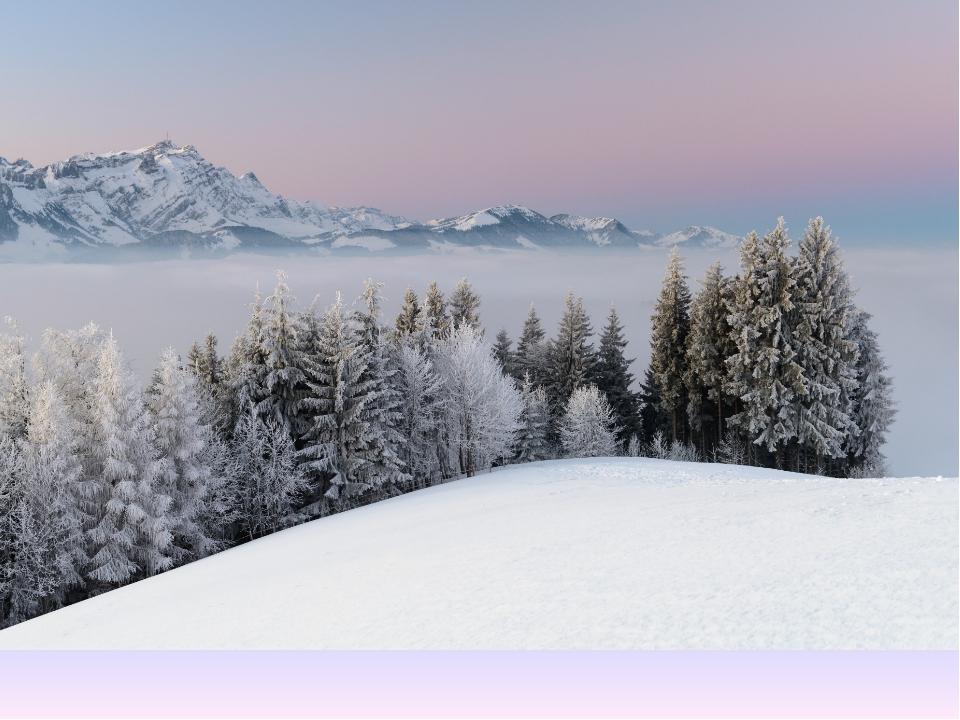 Картинка «Зима»
