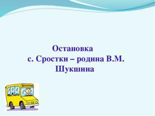 Остановка с. Сростки – родина В.М. Шукшина