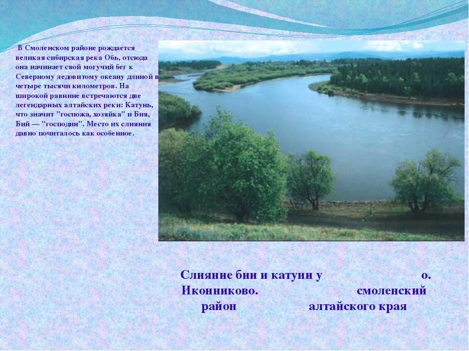 В Смоленском районе рождается великая сибирская река Обь, отсюда она начинае...