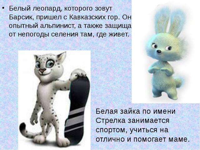 Белый леопард, которого зовут Барсик, пришел с Кавказских гор. Он опытный аль...