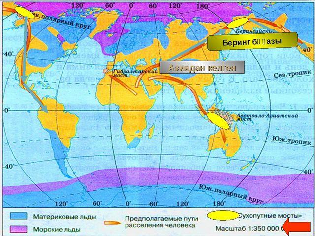 Как происходило заселение материка Южная Америка Беринг бұғазы Азиядан келген