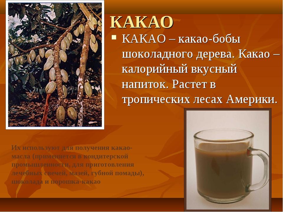 КАКАО КАКАО – какао-бобы шоколадного дерева. Какао – калорийный вкусный напит...