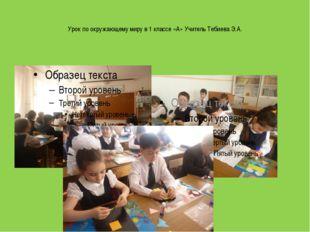 Урок по окружающему миру в 1 классе «А» Учитель Тебиева Э.А.
