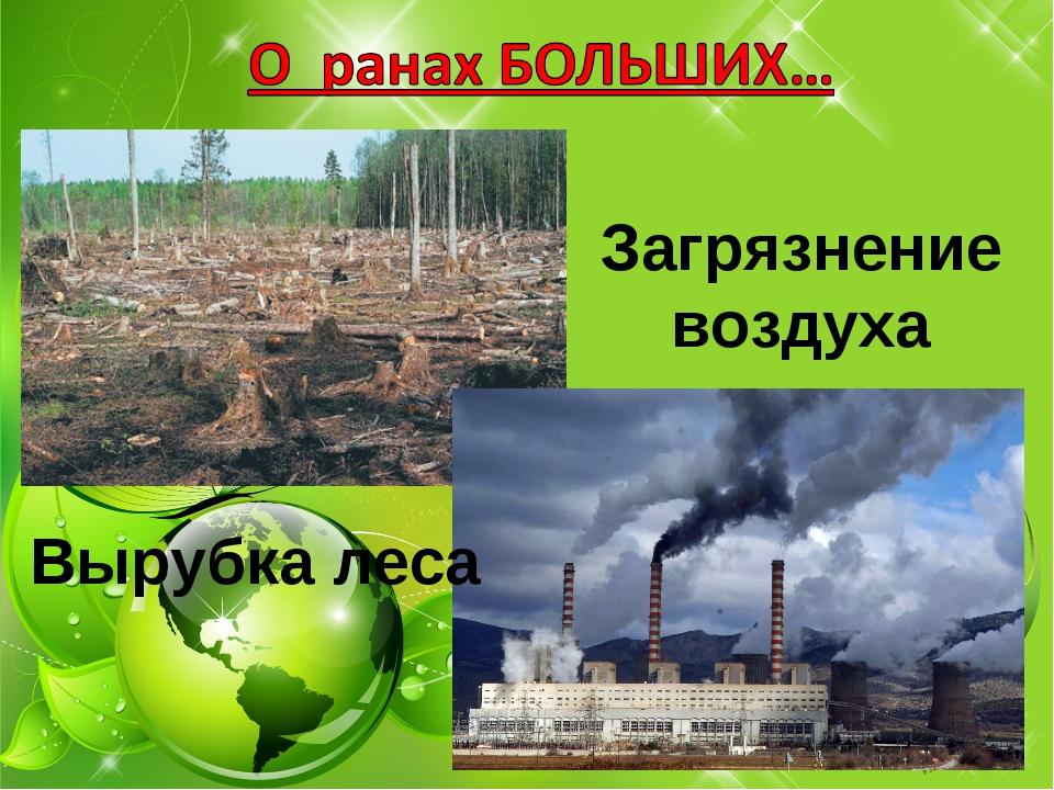 Загрязнение воздуха Вырубка леса