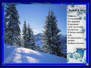 Зимой в лесу Намело, На вьюжило. Все деревья В кружеве: Снег на соснах, На к