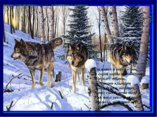 Он живет в лесу густом, В серой шубке и с хвостом, Щелкает зубами, с острыми