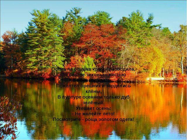 Осень на опушке краски разводила, По листве тихонько кистью проводила: Пожелт...