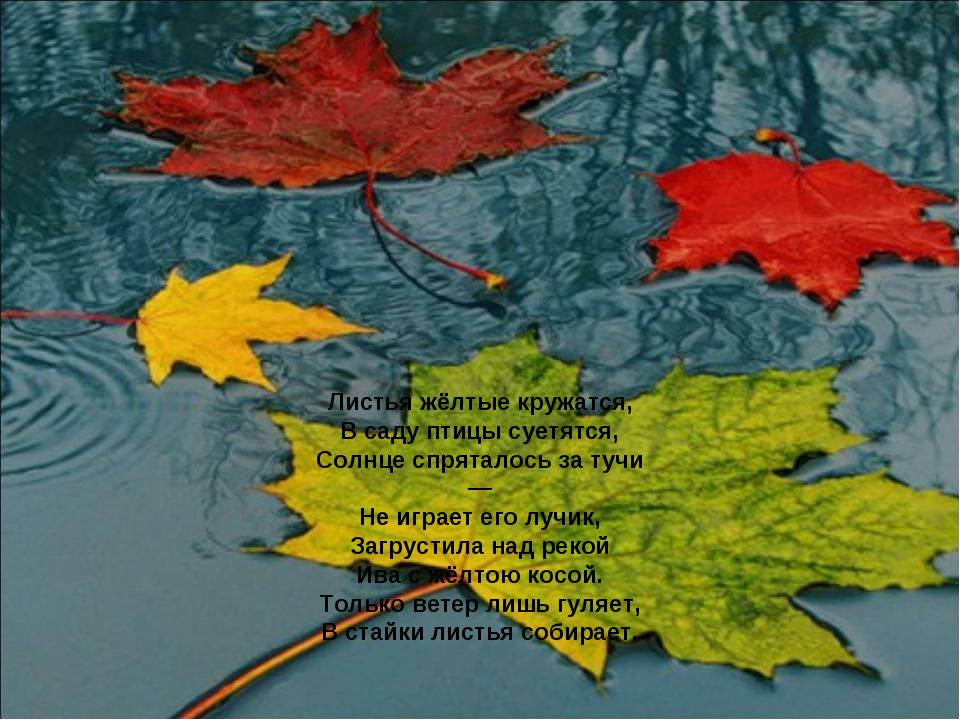 Листья жёлтые кружатся, В саду птицы суетятся, Солнце спряталось за тучи — Н...