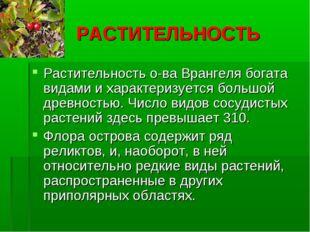 РАСТИТЕЛЬНОСТЬ Растительность о-ва Врангеля богата видами и характеризуется