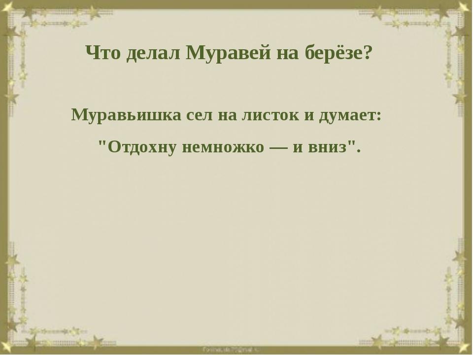 """Что делал Муравей на берёзе? Муравьишка сел на листок и думает: """"Отдохну нем..."""