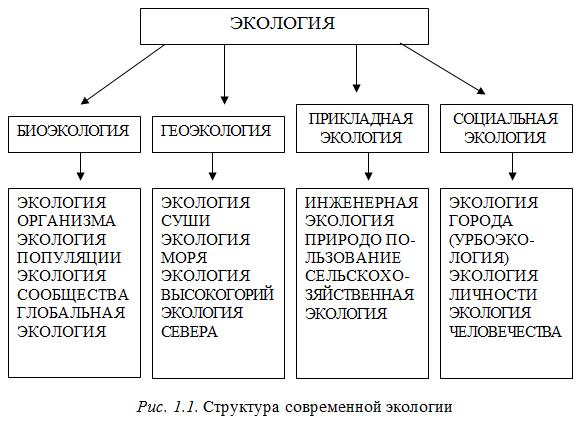 Гусельников М.Э., Стройнова В.Н. Биоэкология: Экология как н…