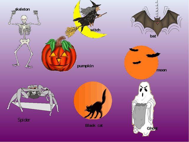 skeleton pumpkin Ghost bat witch Black cat moon Spider