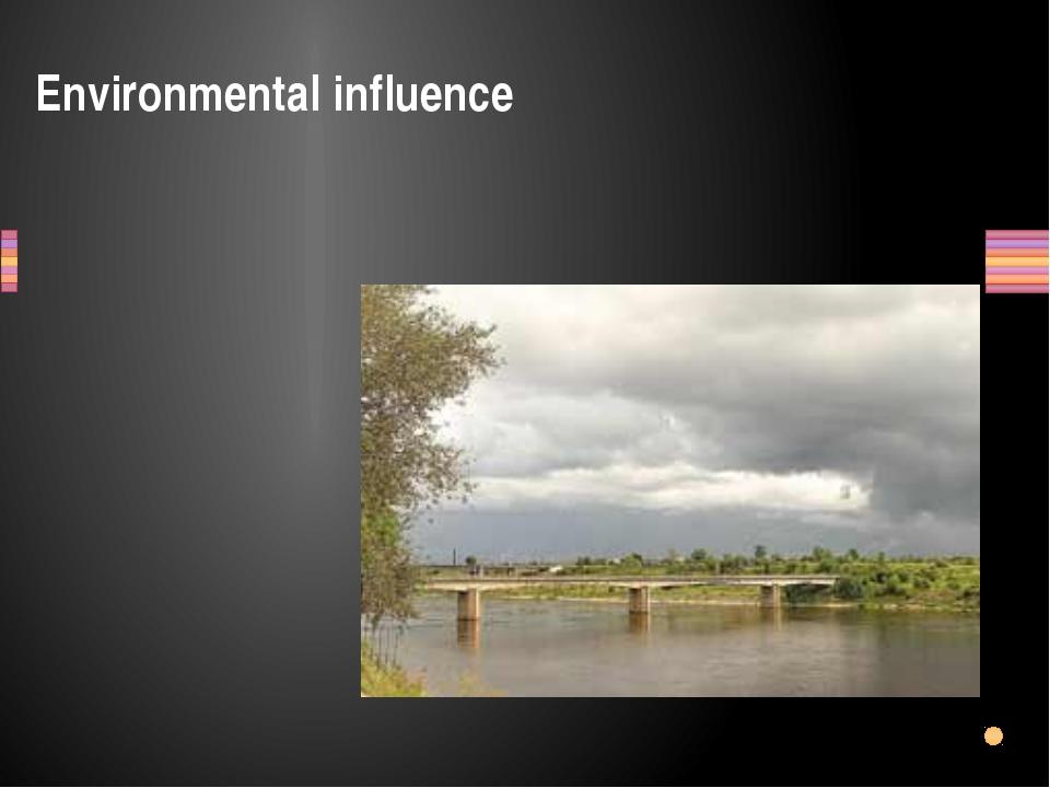 Environmental influence Заголовок раздела