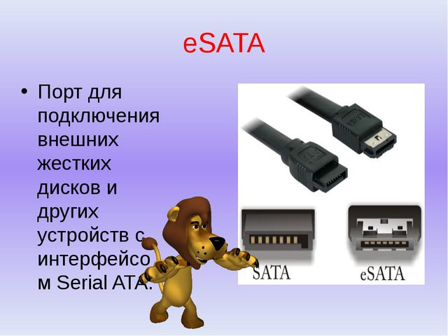 eSATA Порт для подключения внешних жестких дисков и других устройств с интерф...
