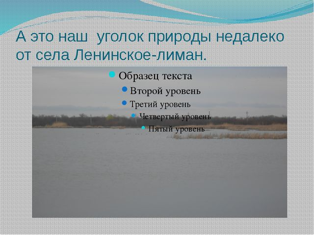 А это наш уголок природы недалеко от села Ленинское-лиман.