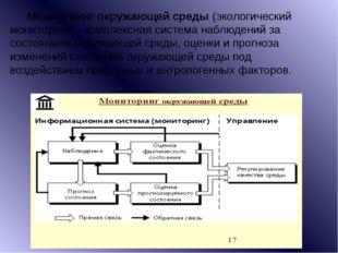 Мониторинг окружающей среды(экологический мониторинг) - комплексная система