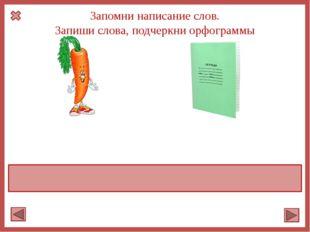 Запомни написание слов. Запиши слова, подчеркни орфограммы морковь тетрадь