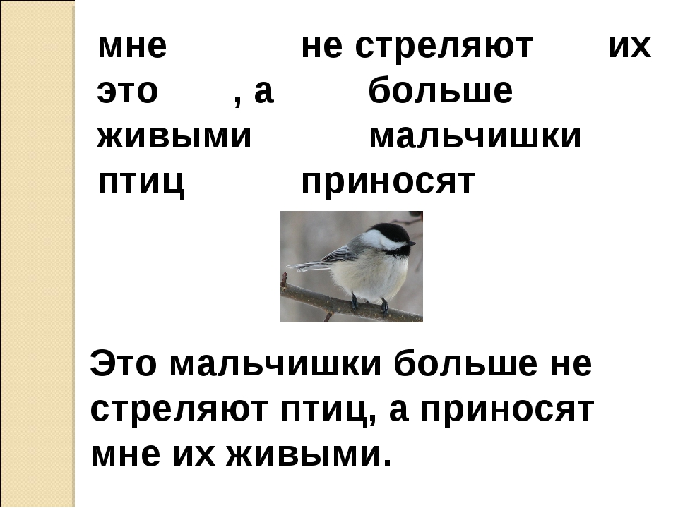 мнене стреляют их это , абольше живымимальчишки птицприносят Это...