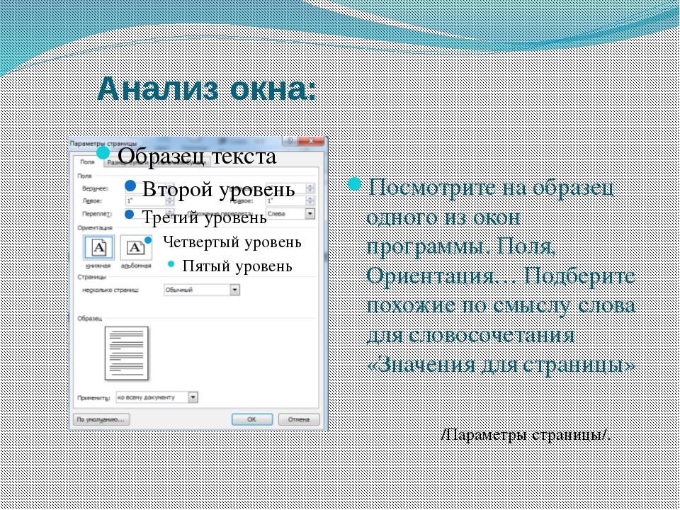 Анализ окна: Посмотрите на образец одного из окон программы. Поля, Ориентация...