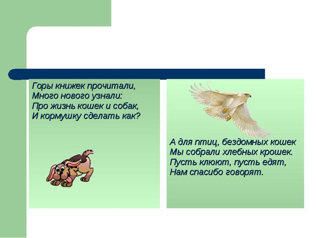 Горы книжек прочитали, Много нового узнали: Про жизнь кошек и собак, И кормуш...
