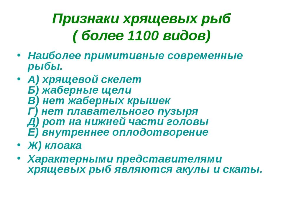 Признаки хрящевых рыб (более 1100 видов) Наиболее примитивные современные ры...