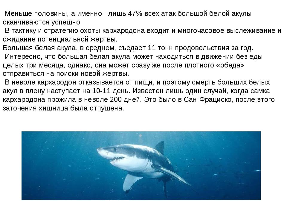 Меньше половины, а именно - лишь 47% всех атак большой белой акулы оканчиваю...