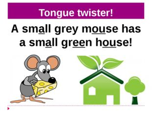 Tongue twister! A small grey mouse has a small green house!