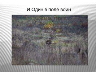 И Один в поле воин