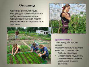 Овощевод Основной результат труда овощеводов – разнообразные и доброкачествен