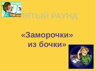 ПЯТЫЙ РАУНД «Заморочки» из бочки» Куликова Н.А.- учитель географии МОУ Ильинс