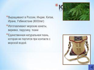 Выращивают в России, Индии, Китае, Иране, Узбекистане (8000лет) Изготавливают