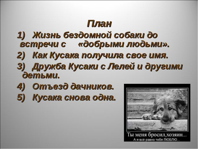План 1) Жизнь бездомной собаки до встречи с «добрыми людьми». 2) Как Кусака п...