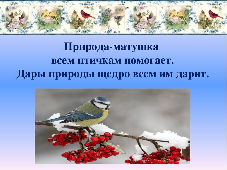 Природа-матушка всем птичкам помогает. Дары природы щедро всем им дарит.