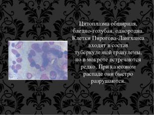 Цитоплазма обширная, бледно-голубая, однородна. Клетки Пирогова-Лангханса вхо