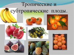 Тропические и субтропические плоды.