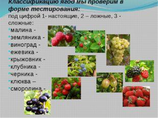 Классификацию ягод мы проверим в форме тестирования: под цифрой 1- настоящие,