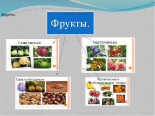 классификация плодов.