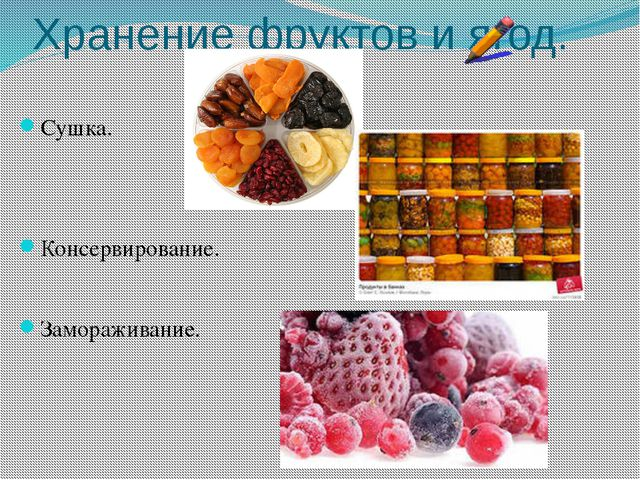 Хранение фруктов и ягод. Сушка. Консервирование. Замораживание.