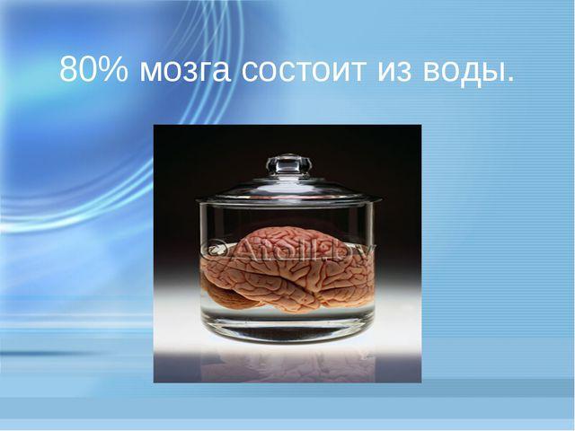 80% мозга состоит из воды.