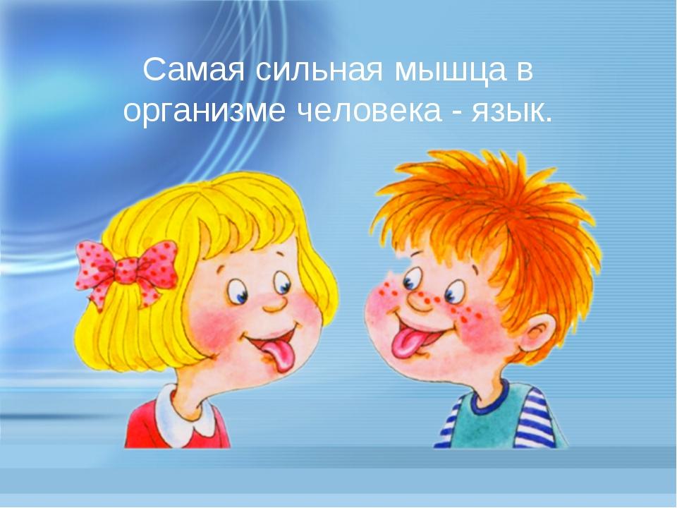 Самая сильная мышца в организме человека - язык.
