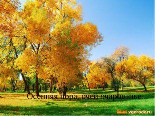 Осенняя пора, очей очарованье…