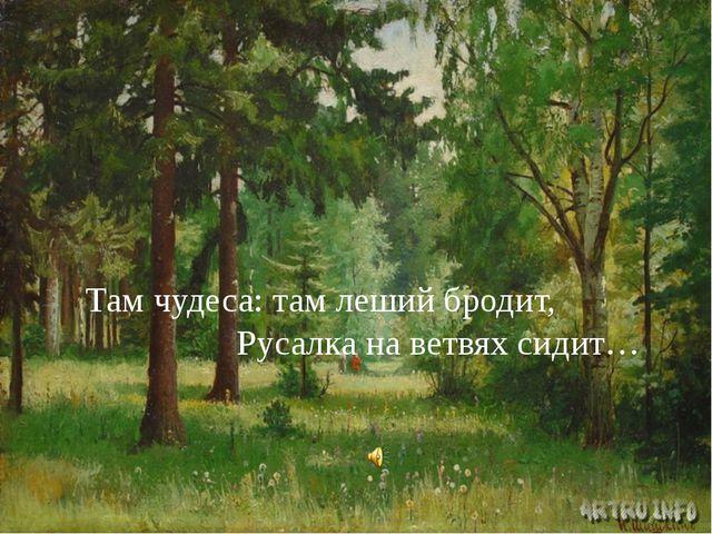 Там чудеса: там леший бродит, Русалка на ветвях сидит…