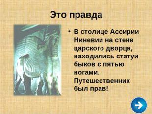 Это правда В столице Ассирии Ниневии на стене царского дворца, находились ста