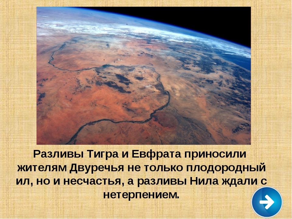 Разливы Тигра и Евфрата приносили жителям Двуречья не только плодородный ил,...