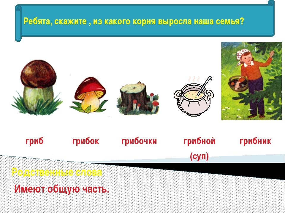 гриб грибок грибочки грибной (суп) грибник Родственные слова Имеют общую част...