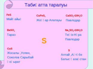 S Табиғатта таралуы FeS Майқайың CuFeS2 Жоңғар Алатауы CaSO4•10H2O Павлодар B