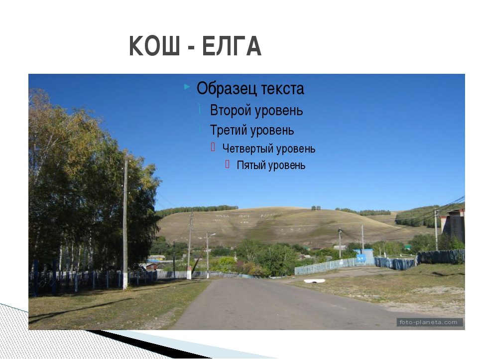 КОШ - ЕЛГА
