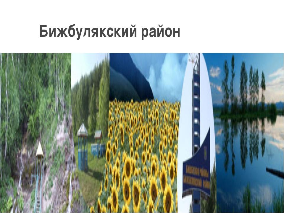 Бижбулякский район